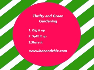 Thrifty and Green Gardening